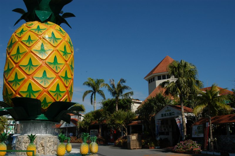 photo of Nago Pineapple Park