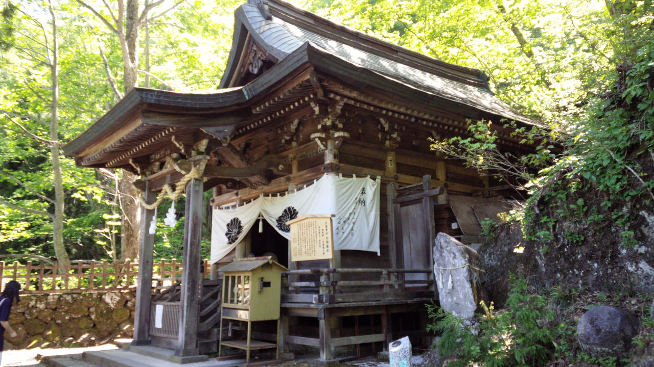 photo of Togakushi Shrine