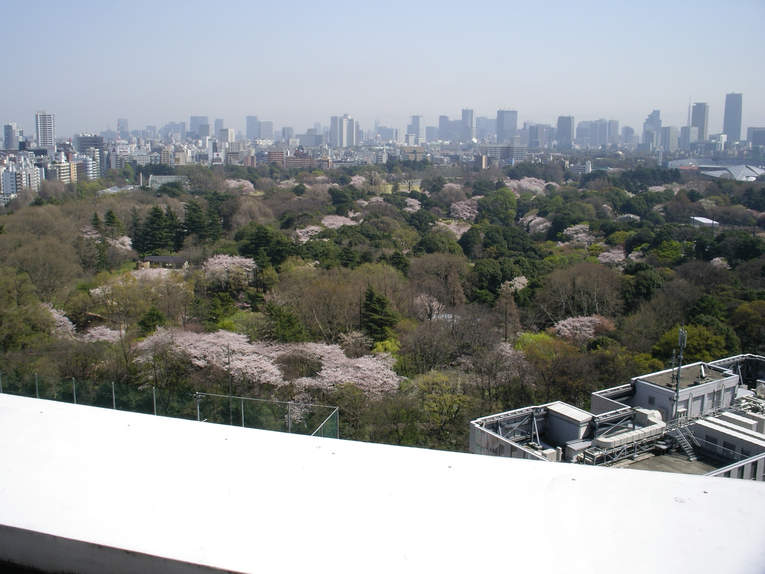photo of Shinjuku Gyoen