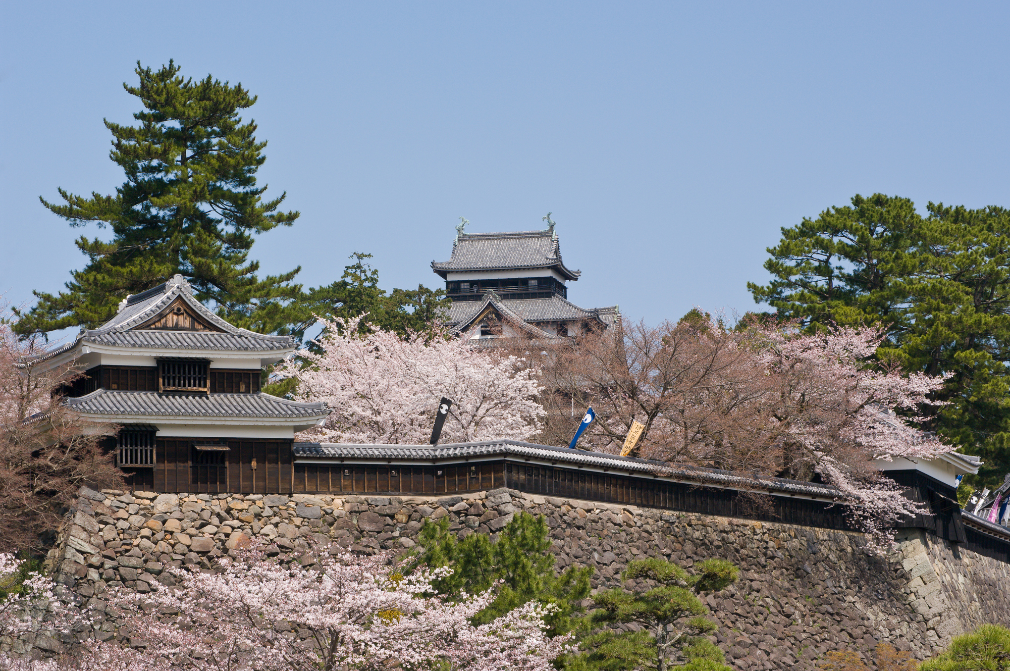 photo of Matsue Castle