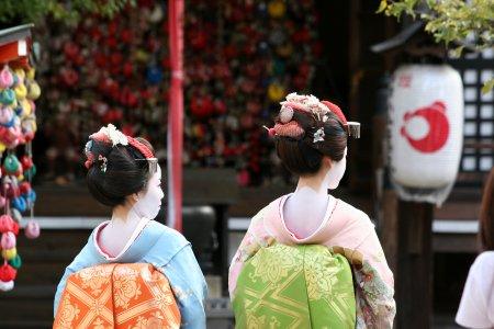 Japan Cherry Blossom Tours 2019/2020, Japanese Sakura Trips & Travel
