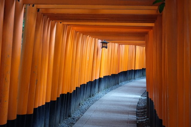 Fushimi Inari-taisha Grand Shrine