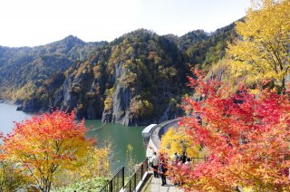 Majestic Japan: Autumn Leaves Tour 2022 - 10/3