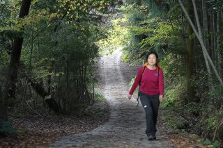 Nakasendo Trail Walking & Hiking Tour: Spring 2021 - 