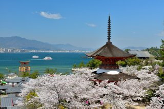 14 day Classic Japan Private Luxury Tour