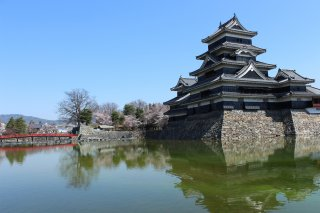 The Golden Triangle of Japan Tour Spring: 2021 - 5/22