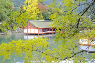 Charms of Southern Japan: Autumn Leaves Tour 2021 - 
