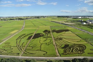 Charms of Tohoku Autumn Tour: Rice Paddy Art 2021 - 