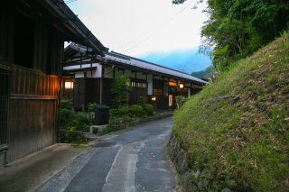 Nakasendo Trail Walking & Hiking Tour: Cherry 