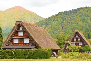 Panoramic Japan Luxury Tour Autumn 2020 - 10/11