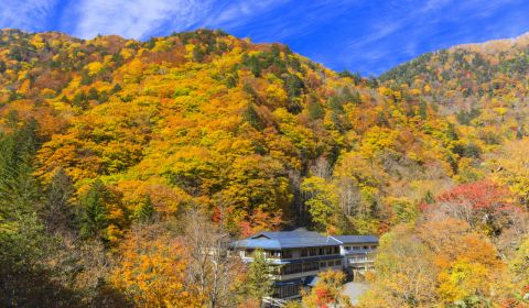 photo of Shirahone Onsen
