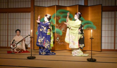 photo of Kyoto Cuisine with Maiko