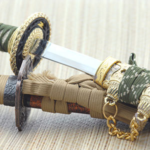 photo of Japanese Sword