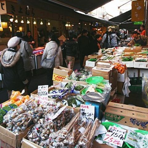 Visiting the Tsukiji Fish Market