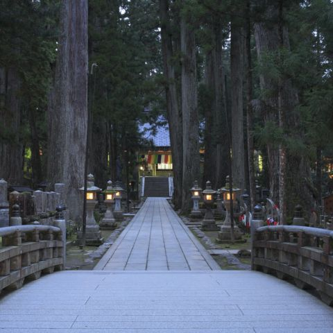 24 Temples & Shinto Shrines to Visit in Japan