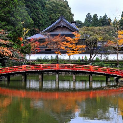 Things to Do in Japan in October