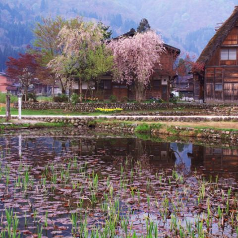 10 Small Towns in Japan You Must Visit