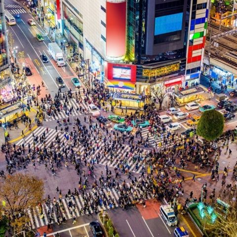 Tokyo Nightlife: The Best Places to Party in Japan