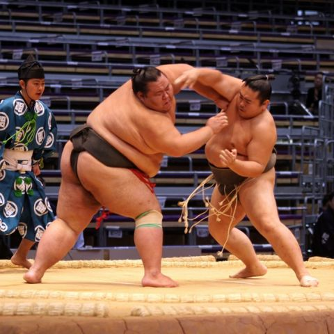 What is Sumo Wrestling &<br> Where to See a Match