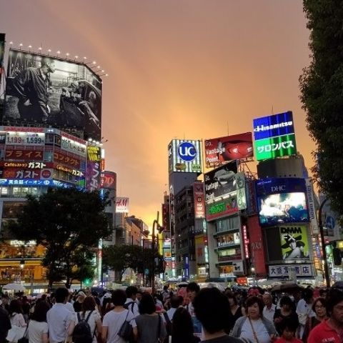 <h1>10 Things to Do in Shibuya</h1>