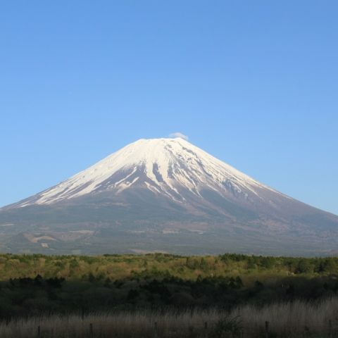 Day Trip from Tokyo: Mount Fuji