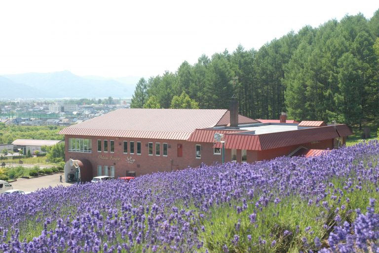 Furano Winery; What to Do in Hokkaido in Summer; All Japan Tours