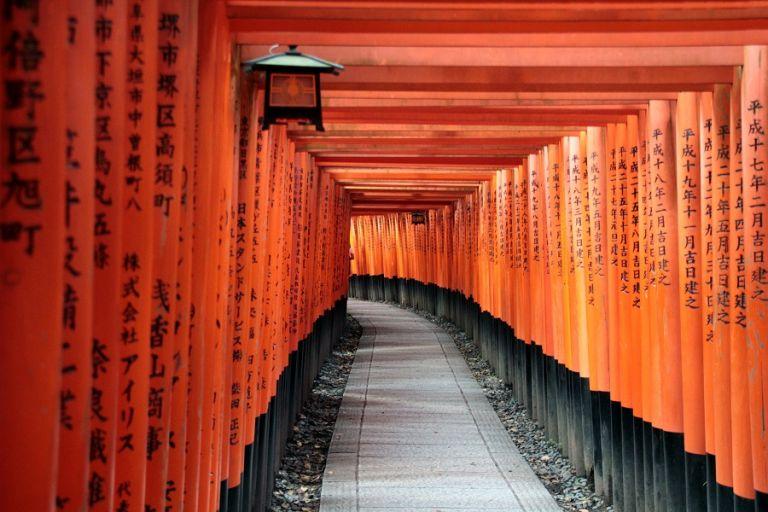 Fushimi Inari Shrine; Fushimi Inari Taisha; Torii Gate; Kyoto, Japan; All Japan Tours; Kyoto; Where to Go in Kyoto in Three Days; Best Kyoto Itinerary; Cherry Blossoms; Autumn Leaves; Cherry Blossom Season;