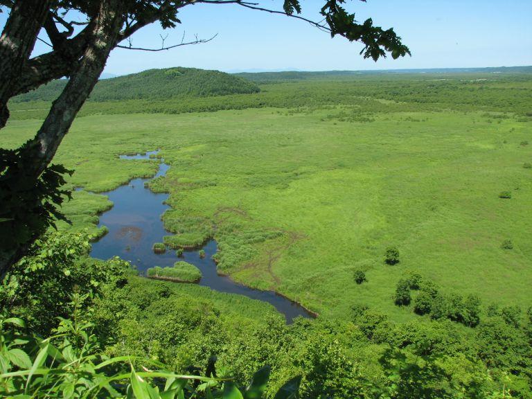 Kushiro Marshlands; What to Do in Hokkaido in Summer; All Japan Tours