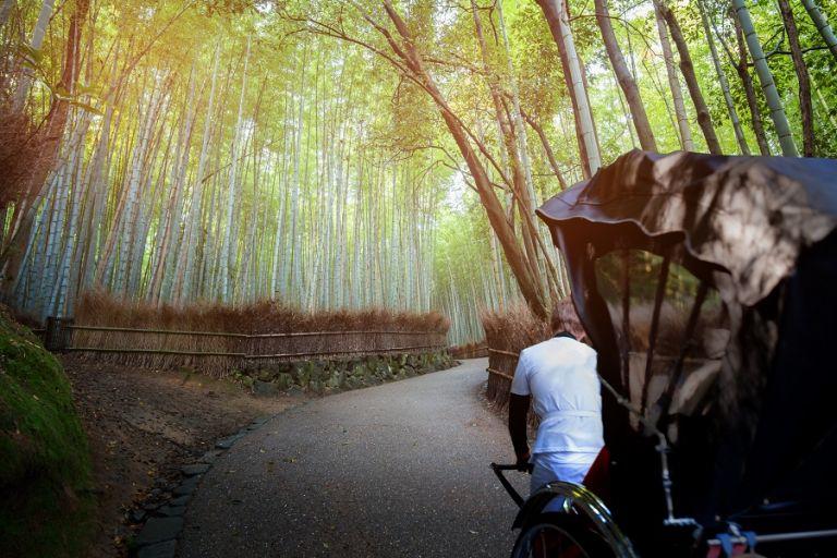 Arashiyama Sagano bamboo forest rickshaw ride