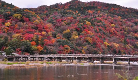 photo of Arashiyama