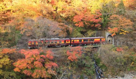 photo of Sagano Scenic Railway