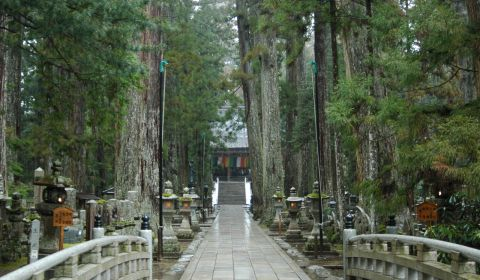 photo of Okunoin Temple